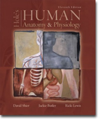 Holes Human Anatomy and Physiology 11th Edition