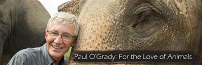 Paul OGrady For the Love of Animals India Ep02 HDTV x264-JIVE
