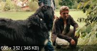 Охота за сокровищами Ганнибала / Lowenzahn - Das Kinoabenteuer (2011) DVDRip
