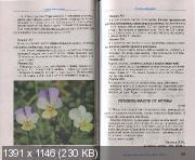 http://i47.fastpic.ru/thumb/2012/1130/14/a91db89501b6efe27bee899bcae29414.jpeg