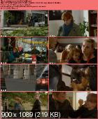 Komisarz.Alex [S02E13] (26) PL.WEBRip.XviD-AMR