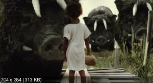 Звери дикого Юга|Beasts of the Southern Wild (BDRip|2012)