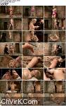 Cherie Deville - Hawt Blonde Gets Pounded - Kink/ HogTied (2013/ HD 720p)
