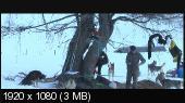 http://i47.fastpic.ru/thumb/2013/0517/10/7e911cfad31d345b156a7db48d0be810.jpeg