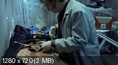 http://i47.fastpic.ru/thumb/2013/0529/5b/89ede95aed1ee1463c6f1ae3640a475b.jpeg