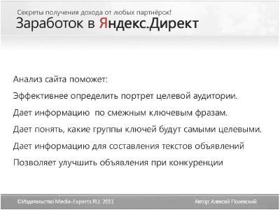 Заработок в Яндекс.Директе. Секреты получения дохода от любых партнерок! Видеокурс [Алексей Полевский] (2012, Заработок, бизнес, WebRip)