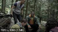 http://i47.fastpic.ru/thumb/2013/0708/50/bfb70022e4e33d323399abd5925add50.jpeg