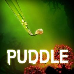 Puddle (2012, PC)
