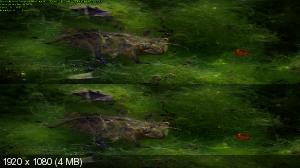 Покорение неба 3D с Дэвидом Аттенборо / David Attenborough's Conquest of the Skies 3D ( by Ash61) Вертикальная анаморфная стереопара
