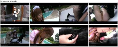 41df20f645c4dbb3f12f3cd9f7c59c90 - Animal Sex Videos Free Download